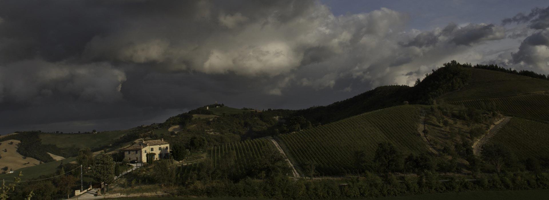 vigneti-valturio-caltravaglio-panoramica-nuvole