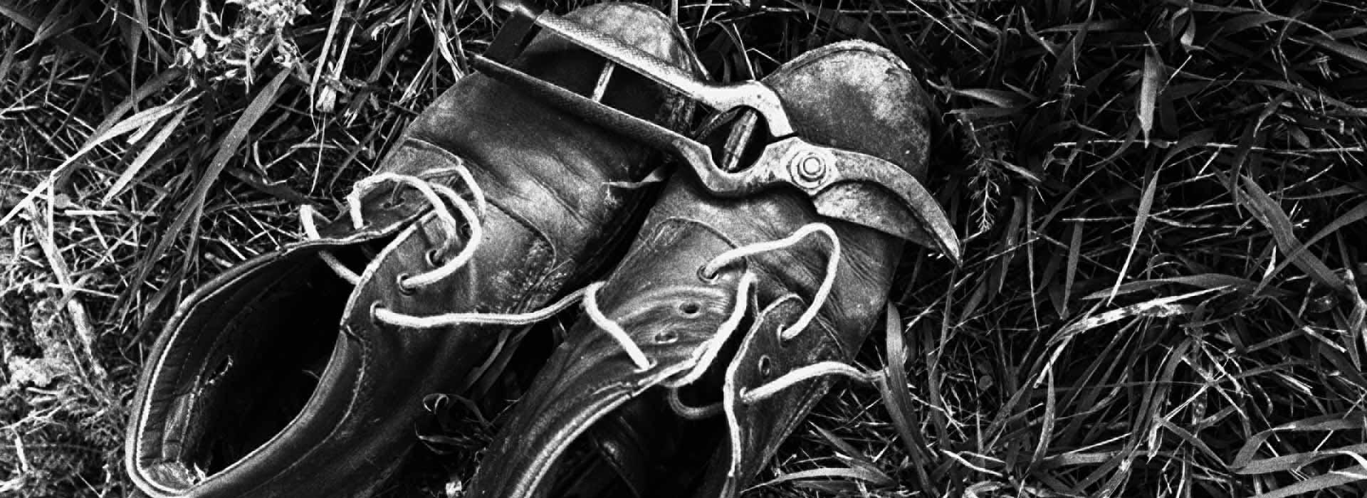 biologico-scarpe